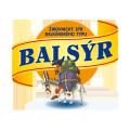 Balsýr